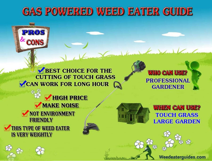 best gas weed eater and edger combo