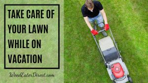 How do you Take Care of Your Lawn When You Are on a Vacation?