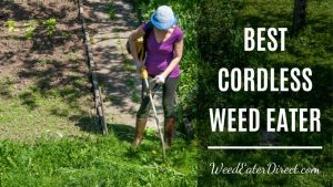 The Best Cordless Weed Eater – the Most Efficient Choice