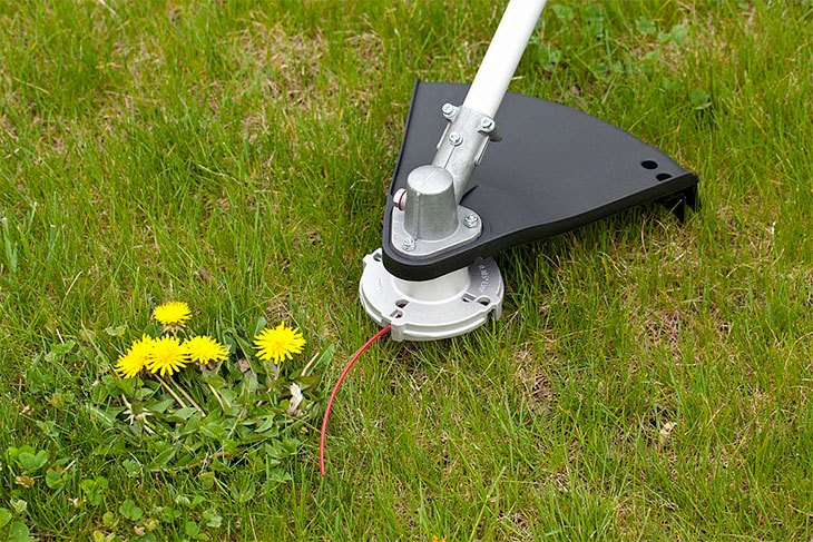 best string trimmer head for echo