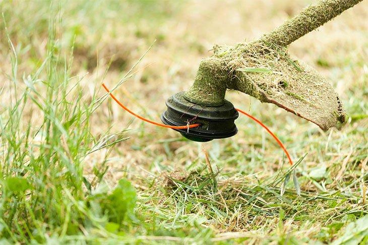 how to use a weed eater to cut weeds