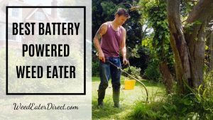 The Best Battery–powered Weed Eater on the Market – Top Pick