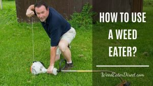 How To Use A Weed Eater (The Detailed Guide)