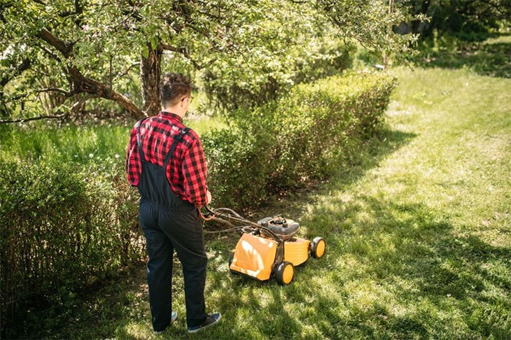 best walk behind string trimmer line
