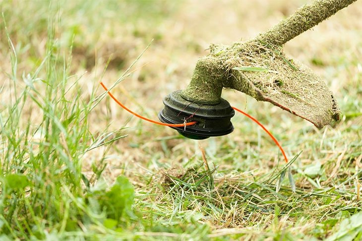 lawn edging with a string trimmer