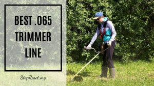 The Best .065 Trimmer Line: Everything You Need to Know